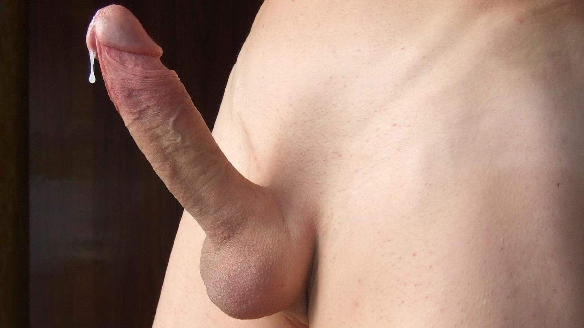 Член бритый фото порно