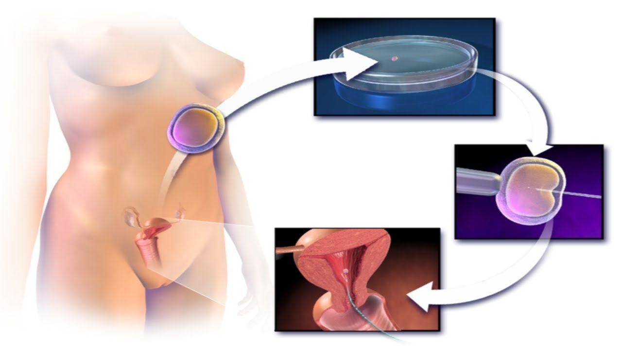 Sperm when pregnant