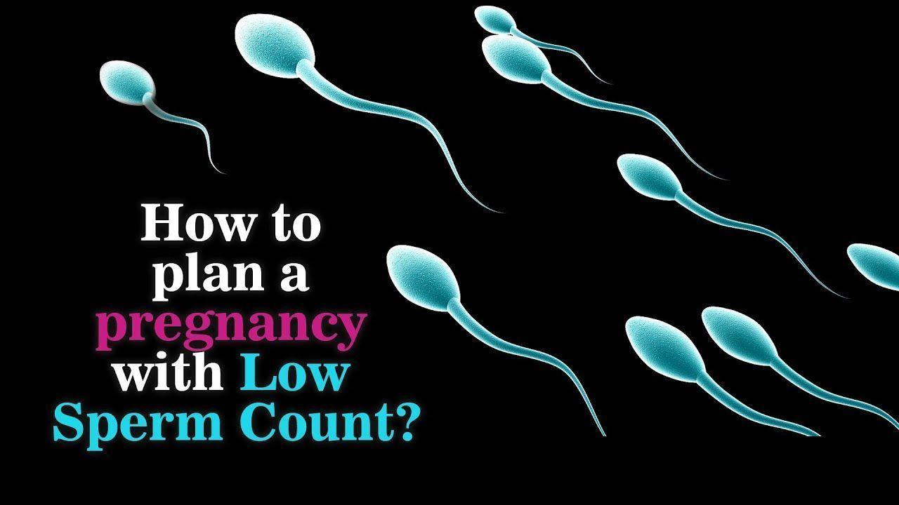 best of Pregnant Sperm when