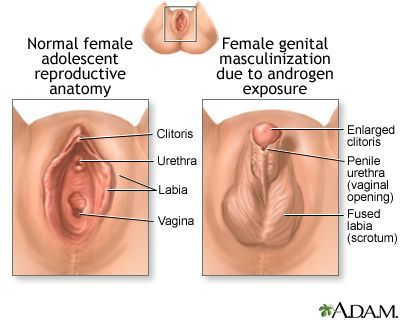 best of To penis surgery Clitoris