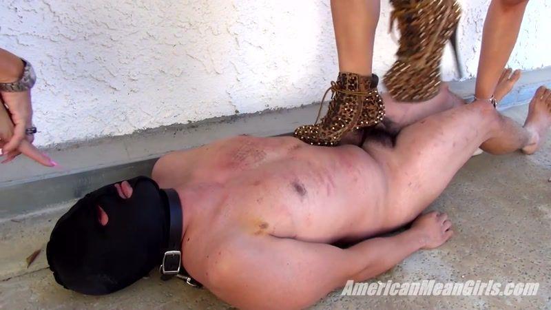 Wonder W. reccomend Drag queens femdom trampling