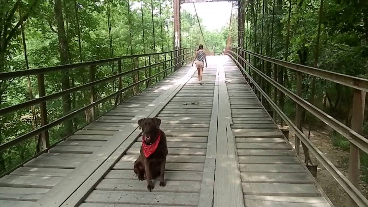 Missouri swinging bridges