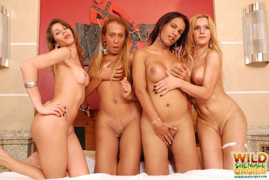 Accept. opinion, female orgy best your place would